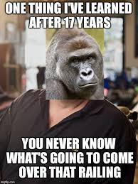Rick Harrison Meme Generator - rick harrison memes imgflip