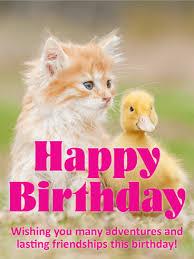 Cat Birthday Cards Cat Birthday Cards Birthday Greeting Cards By Davia Free Ecards