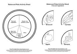 learning what makes a healthy balanced plate a printable