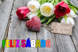 descargar imagenes de feliz sabado gratis feliz sabado buenos dias tulipanes descarga de imágenes