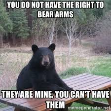 Right To Bear Arms Meme - ironic irony of the 2nd amendment