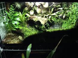 81 best terrariums images on pinterest terrarium fish tanks and
