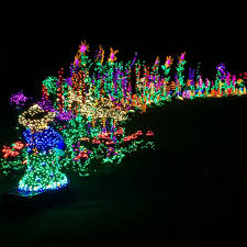 Frozen Christmas Light Show by Julia Duin Page 2