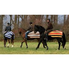 Outdoor Rugs For Horses Exercise Rugs Dover Saddlery