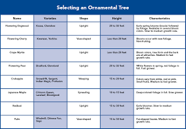 choose and plant ornamental trees
