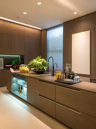 Brown Interior Design by 25 All Time Favorite Modern Kitchen Ideas U0026 Remodeling Photos Houzz