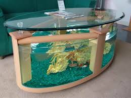 Decorative Water Tanks 77 Best Fresh Water And Salt Water Fish Tanks Images On Pinterest