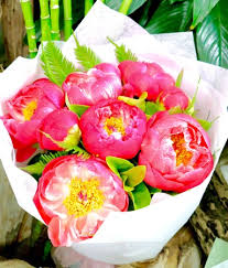 Peonies Delivery Peonies Sydney Florist Local Flower Delivery