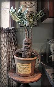 halloween props usa my version of a harry potter mandrake my harry potter