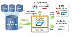 sap data analyst resume sample