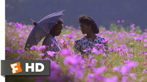 the color purple 5 6 movie clip god loves admiration 1985 hd