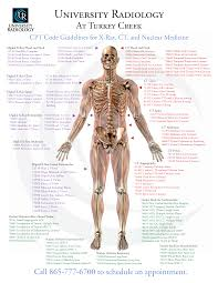 university radiology at turkey creek cpt code guidelines anatomy