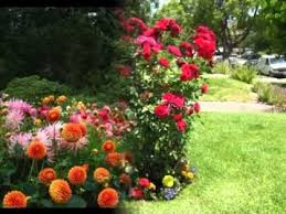 flower garden ideas 1000 images about flower bed ideas on