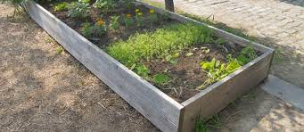 Home Vegetable Garden Ideas Vegetable Planter Box Ideas Home Design Ideas And Pictures