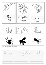 arabic insects free templates links and more islamic studies