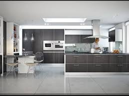 modern kitchen cabinets nyc kitchen cabinets new york kitchen design images on stunning