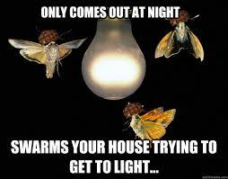 Moth Meme - scumbag moths memes quickmeme