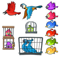 rio characters angry birds wiki fandom powered wikia