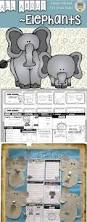 best 25 information about elephant ideas on pinterest elephant