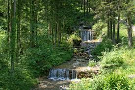 free images landscape nature forest waterfall creek trail