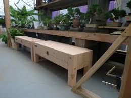 bonsai event daizen joinery
