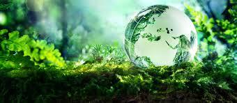 environment government of kerala india