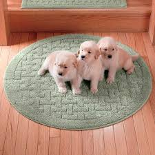 Pet Resistant Rugs Best 25 Washable Area Rugs Ideas On Pinterest Round Kitchen