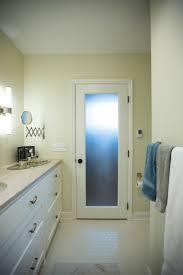 Interior Doors Privacy Glass 316 Best Interior Doors Images On Pinterest Interior Doors