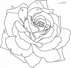 how to draw a realistic rose with stem urldircom