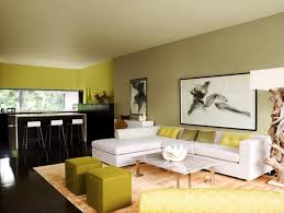 Idea Living Room Paint Nakicphotography - Living rooms colors ideas
