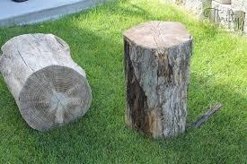 Tree Stump Side Table Turn Old Tree Stumps Into Cute Side Tables Hometalk