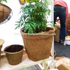 Succulent Planters For Sale by Flower Pots For Sale Flower Pots For Sale Suppliers And