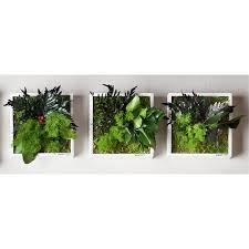 pro idee küche echtpflanzenbilder 3 jahre garantie pro idee