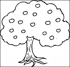 download tree u0026 leaves coloring pages kids u0026 color zini