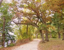 file lakeshore path2 madison wi jpg wikimedia commons