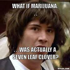 Conspiracy Theorist Meme - 19 best conspiracy keanu meme images on pinterest funny images