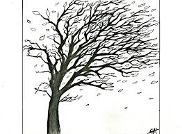 wind blown tree by haussage on deviantart