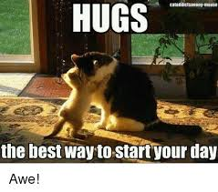 Awe Meme - cataddictsanony mouse hugs the best way to startyour day awe meme