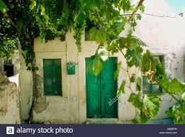 green grapes overhanging backyard of white washed greek cottage