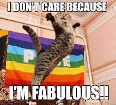 I Am Fabulous Meme - fabulous cat i don t care because i m fabulous weknowmemes