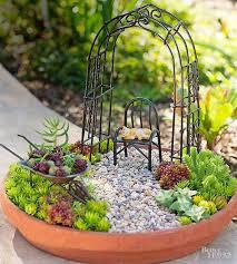 529 best saavy succulents images on pinterest succulents garden