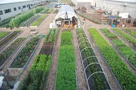 Kbcc Map Kingsborough Community College Urban Farm