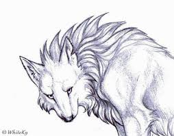 angry wolf sketch by whitek9 on deviantart