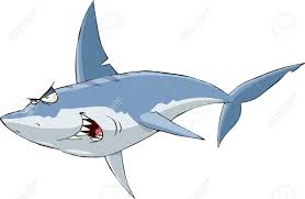 shark on a white background royalty free cliparts vectors and