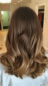 light brown hair light brown hair colors with highlights for 2017 best hair color