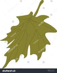 maple leaf vector autumn leaf seasonal stock vector 464205935