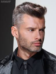 salt and pepper hair colour practical short clipped men s hair with a salt and pepper color