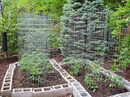 Backyard Vegetable Garden Ideas Small Backyard Vegetable Garden Layout Landscaping Backyards