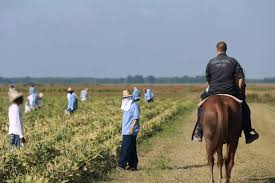 a of slavery in modern america the atlantic prison labor in america how is it the atlantic