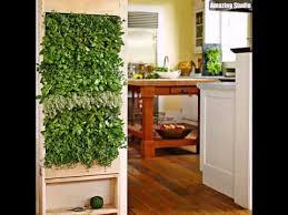 herb garden indoor indoor herb garden wall youtube